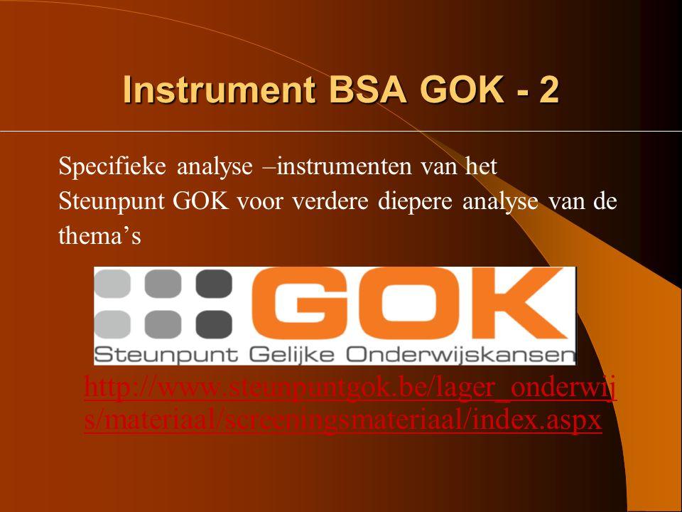 Instrument BSA GOK - 2 Specifieke analyse –instrumenten van het. Steunpunt GOK voor verdere diepere analyse van de.