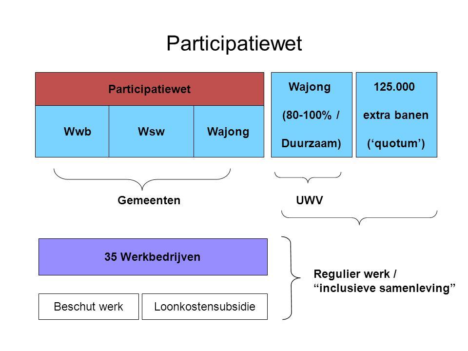 Participatiewet Participatiewet Wajong (80-100% / Duurzaam) 125.000