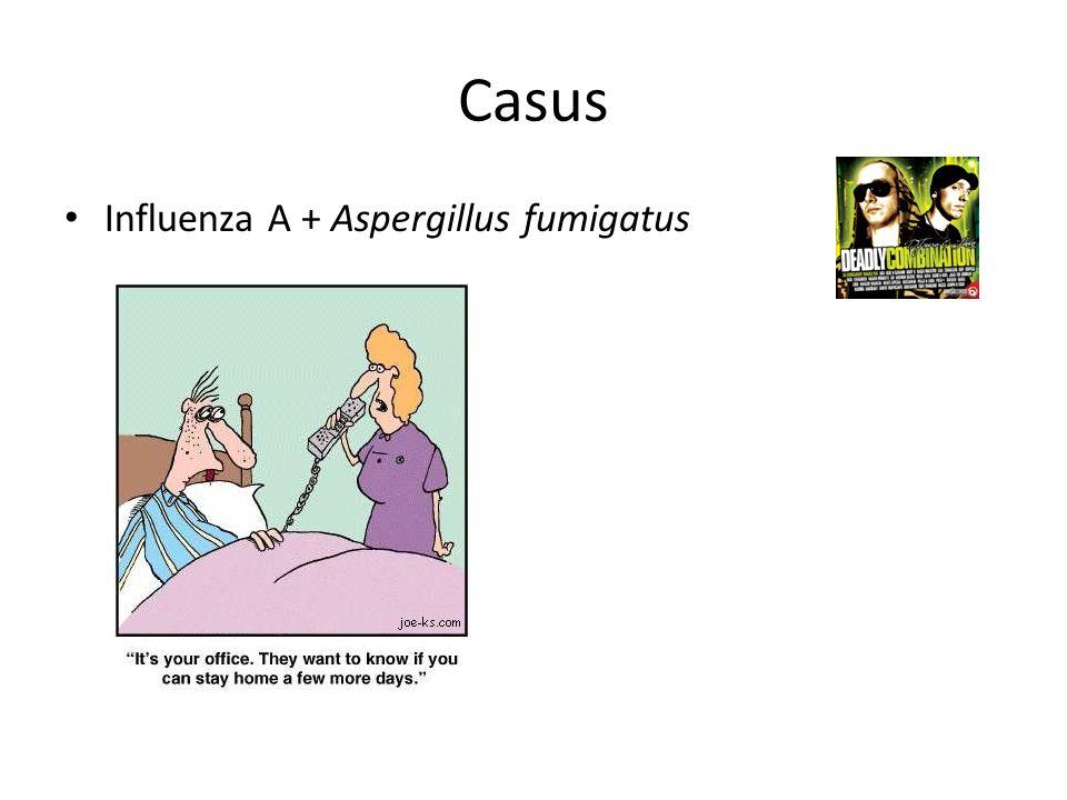 Casus Influenza A + Aspergillus fumigatus