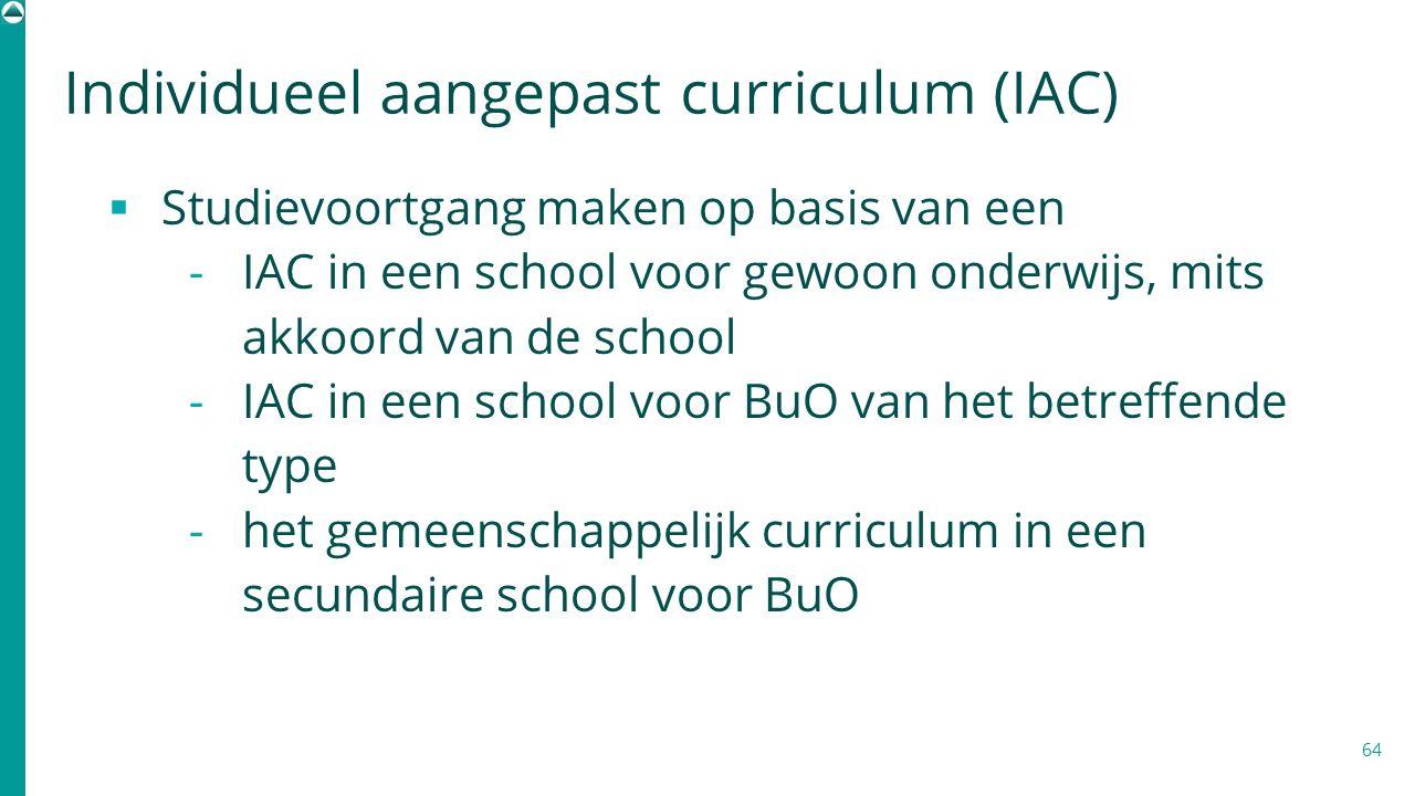 Individueel aangepast curriculum (IAC)