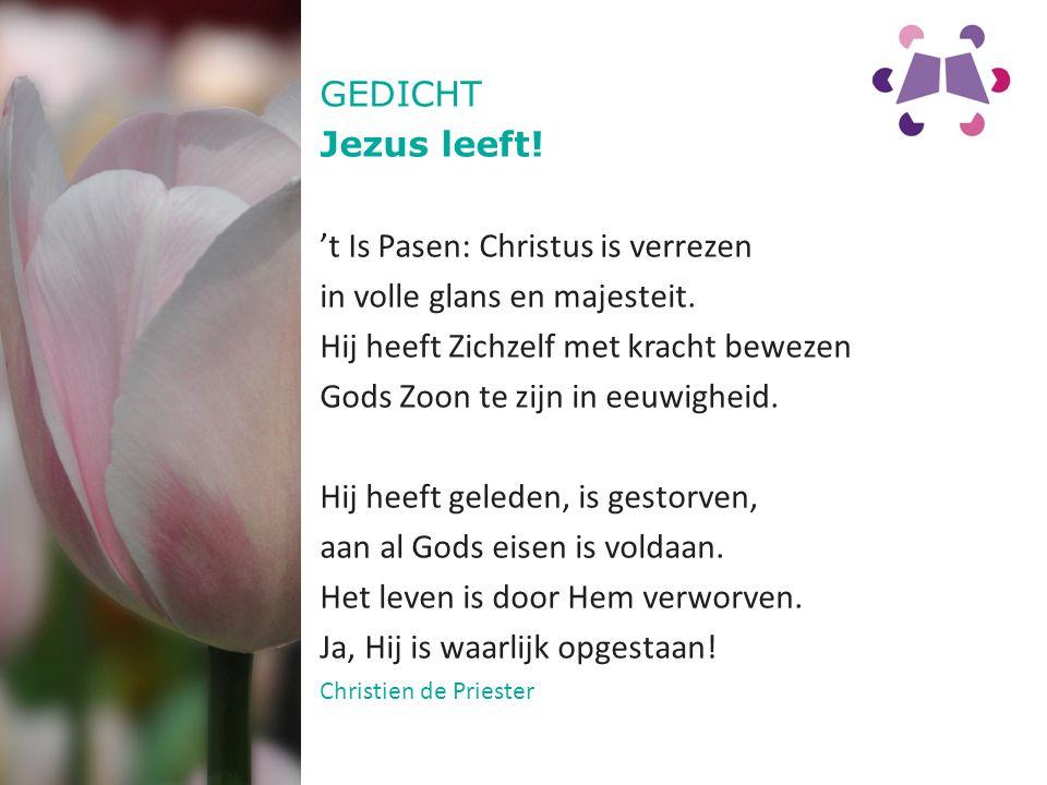 't Is Pasen: Christus is verrezen in volle glans en majesteit.