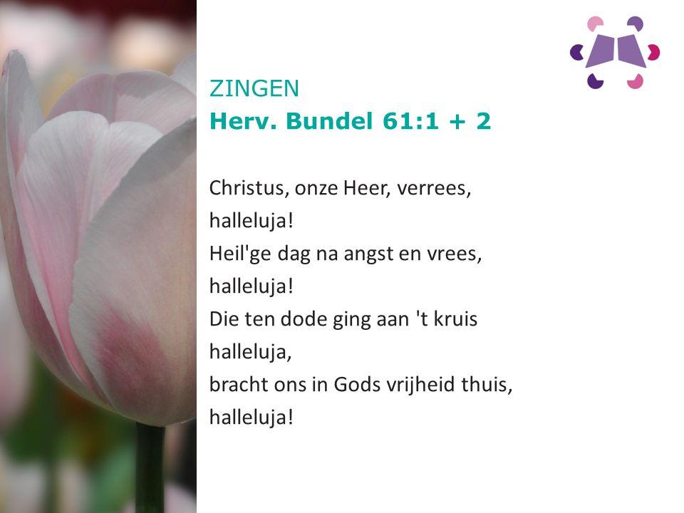 ZINGEN Herv. Bundel 61:1 + 2. Christus, onze Heer, verrees, halleluja! Heil ge dag na angst en vrees,