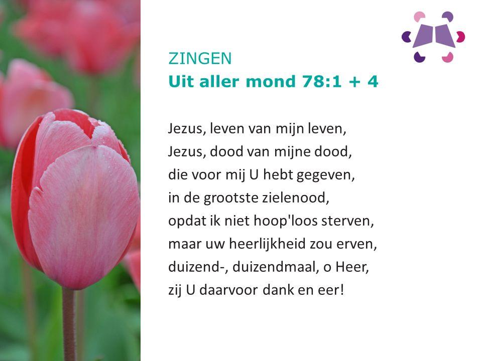 ZINGEN Uit aller mond 78:1 + 4. Jezus, leven van mijn leven, Jezus, dood van mijne dood, die voor mij U hebt gegeven,