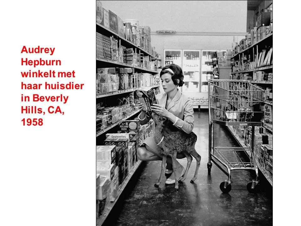 Audrey Hepburn winkelt met haar huisdier in Beverly Hills, CA, 1958