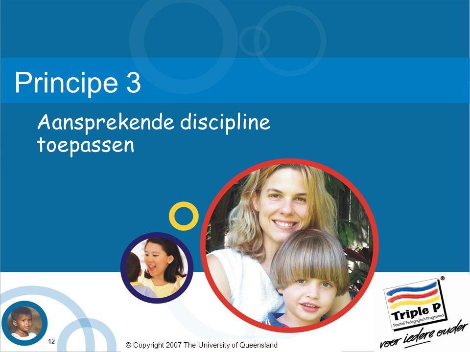 Principe 3 Aansprekende discipline toepassen
