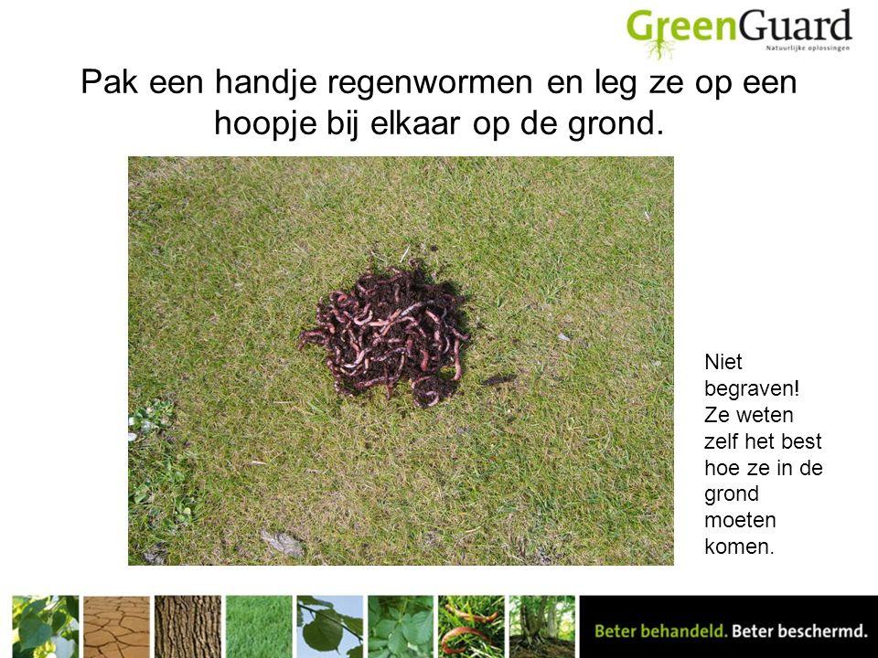 Pak een handje regenwormen en leg ze op een hoopje bij elkaar op de grond.