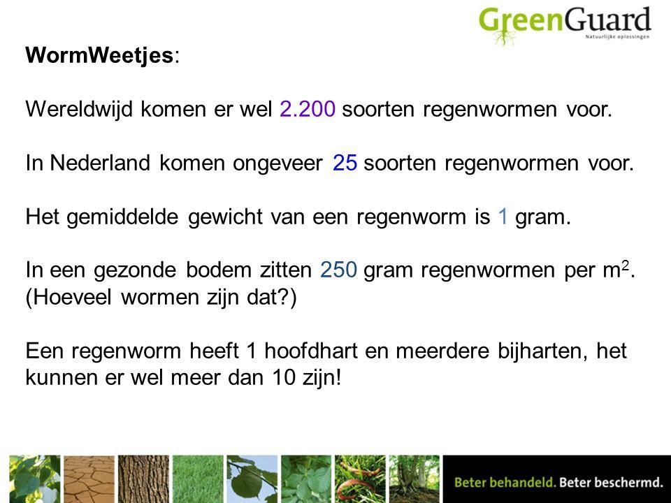 WormWeetjes: Wereldwijd komen er wel 2. 200 soorten regenwormen voor