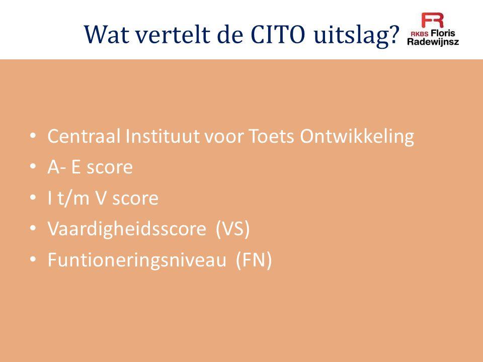 Wat vertelt de CITO uitslag