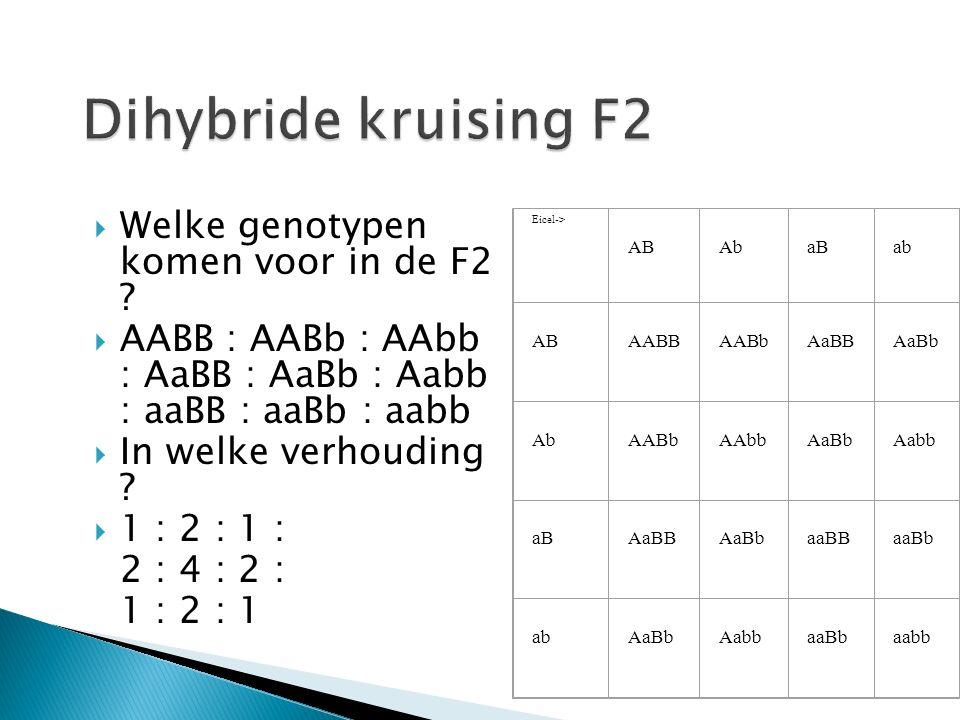 Dihybride kruising F2 Welke genotypen komen voor in de F2