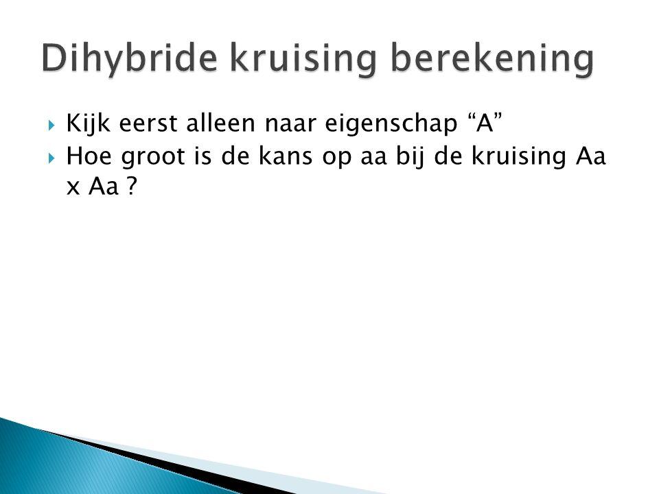 Dihybride kruising berekening