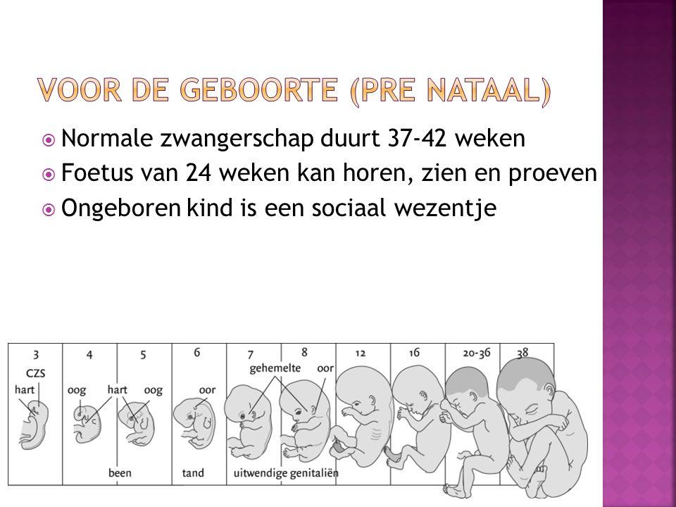 Voor de geboorte (pre nataal)