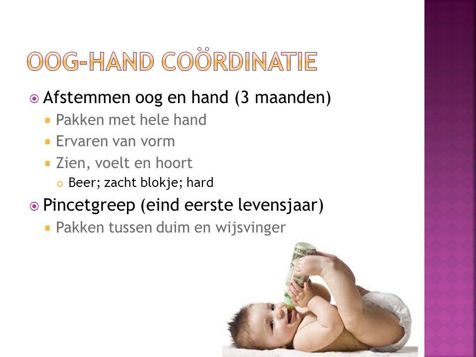 Oog-hand coördinatie Afstemmen oog en hand (3 maanden)