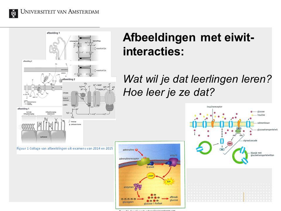 Afbeeldingen met eiwit-interacties: Wat wil je dat leerlingen leren
