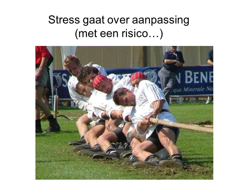 Stress gaat over aanpassing (met een risico…)