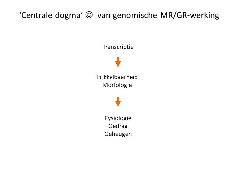 'Centrale dogma'  van genomische MR/GR-werking