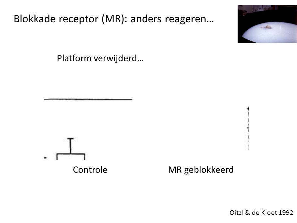 Blokkade receptor (MR): anders reageren…