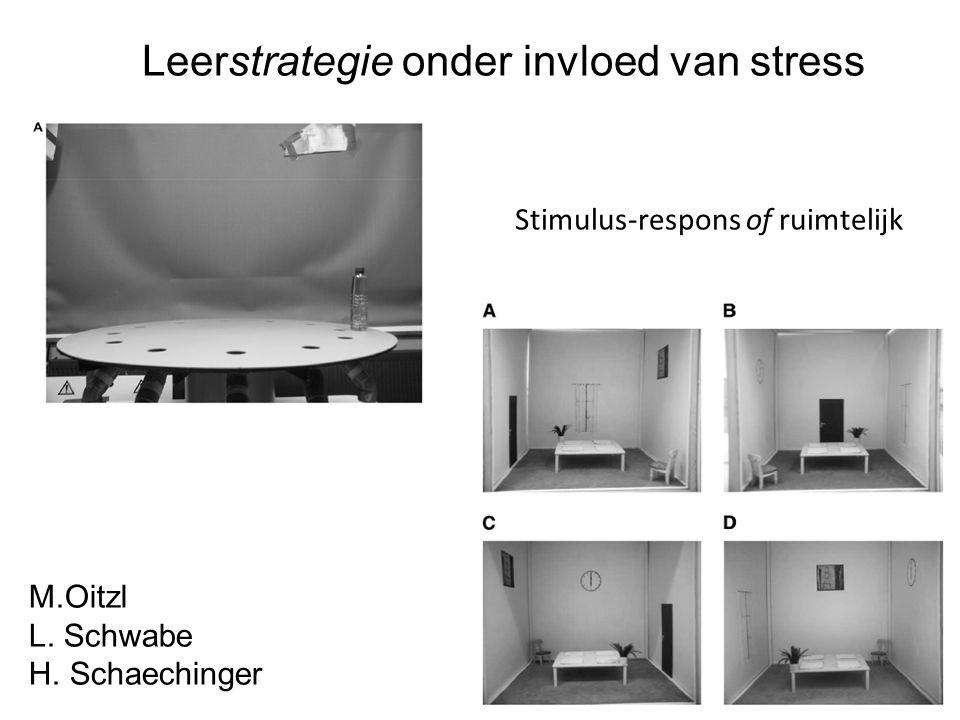 Leerstrategie onder invloed van stress