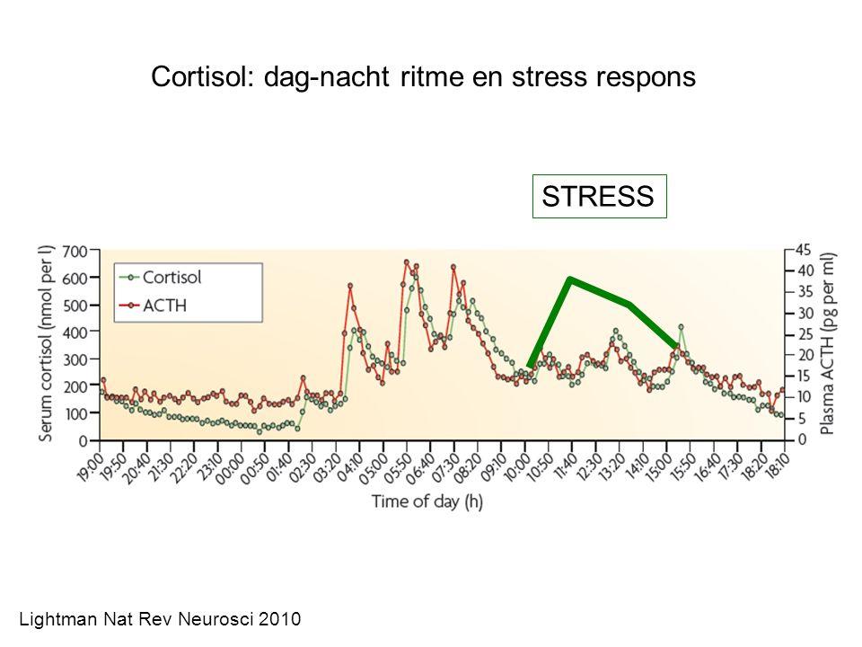 Cortisol: dag-nacht ritme en stress respons