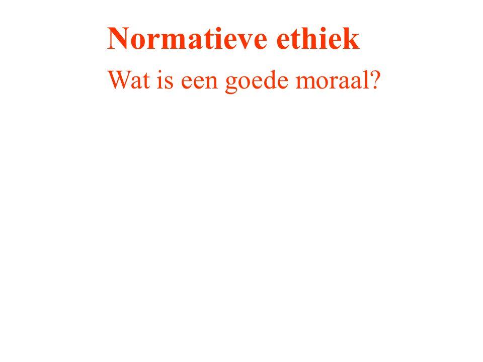 Normatieve ethiek Wat is een goede moraal