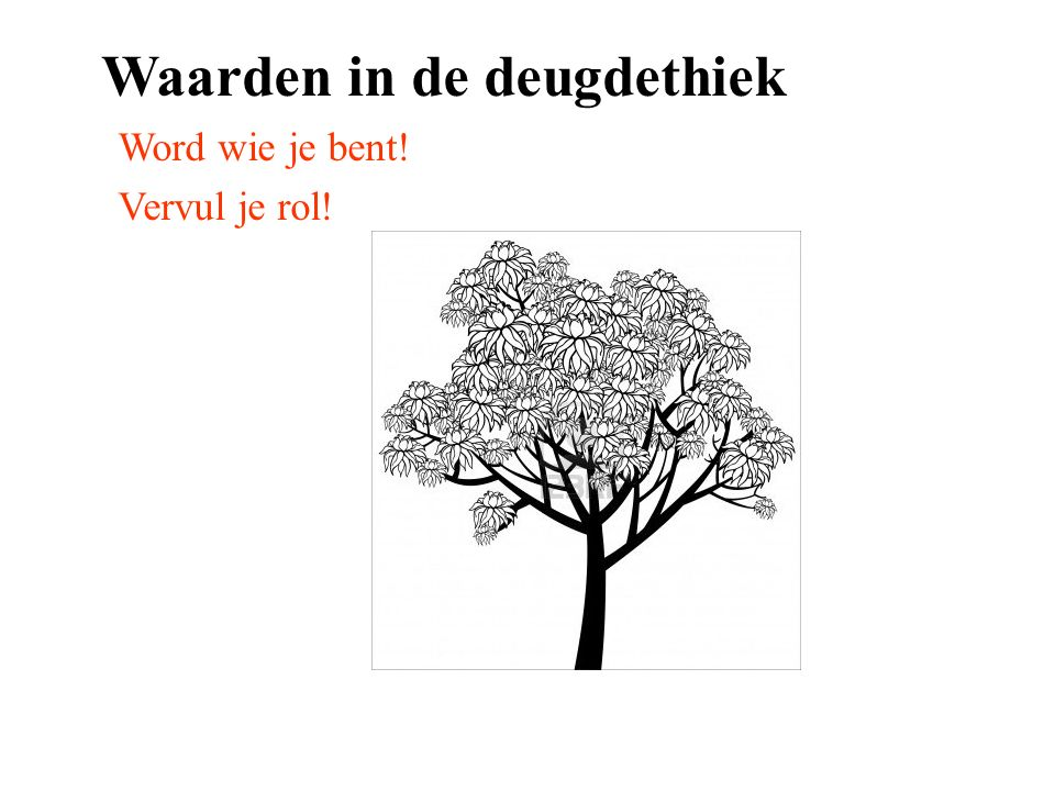 Waarden in de deugdethiek
