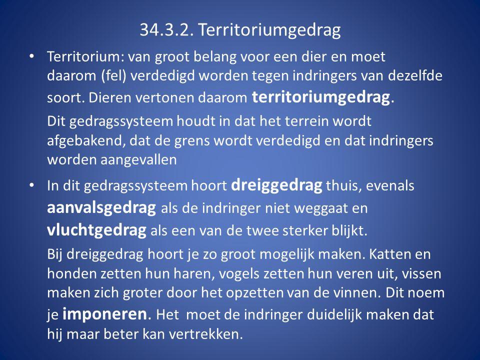 34.3.2. Territoriumgedrag