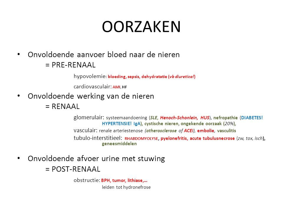 OORZAKEN Onvoldoende aanvoer bloed naar de nieren = PRE-RENAAL