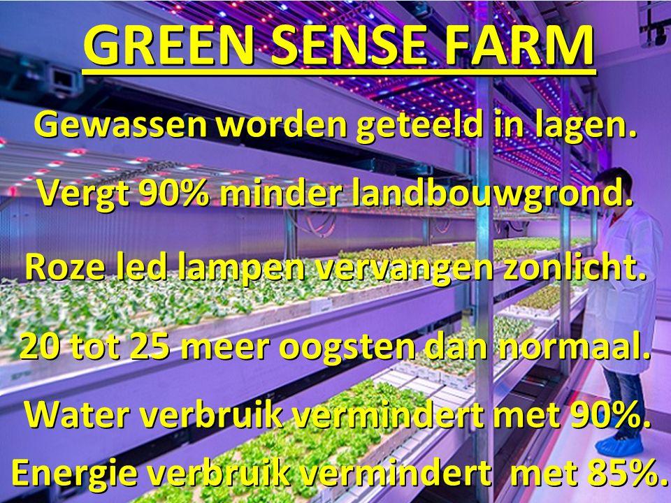 GREEN SENSE FARM Gewassen worden geteeld in lagen.