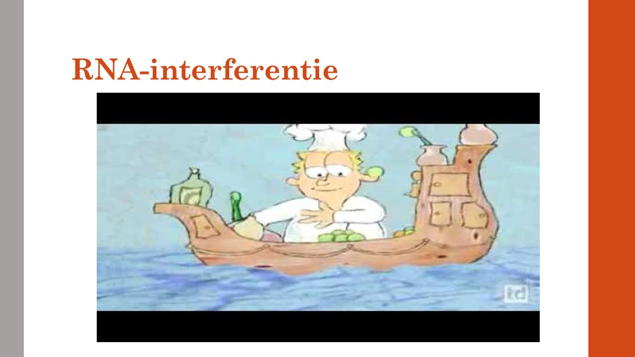 RNA-interferentie