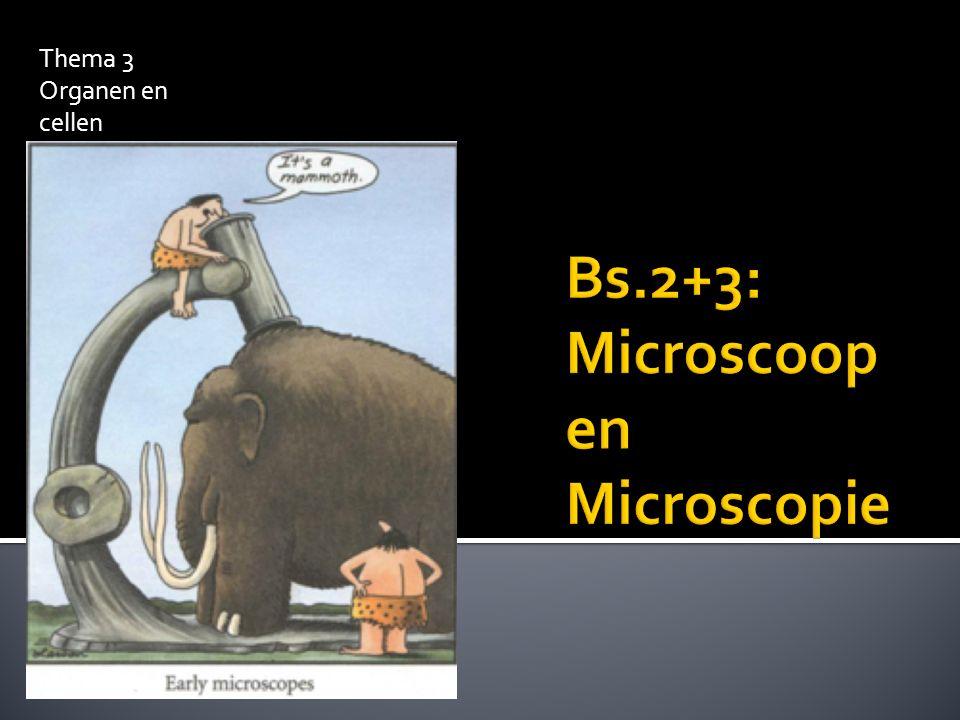 Bs.2+3: Microscoop en Microscopie