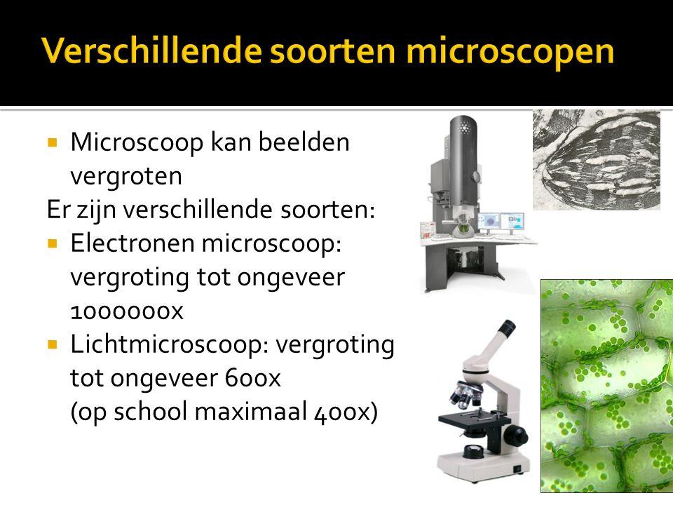 Verschillende soorten microscopen
