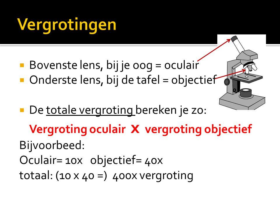 Vergrotingen Bovenste lens, bij je oog = oculair
