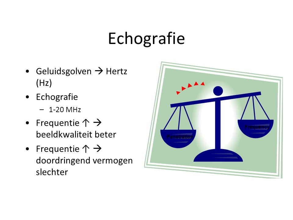 Echografie Transducers