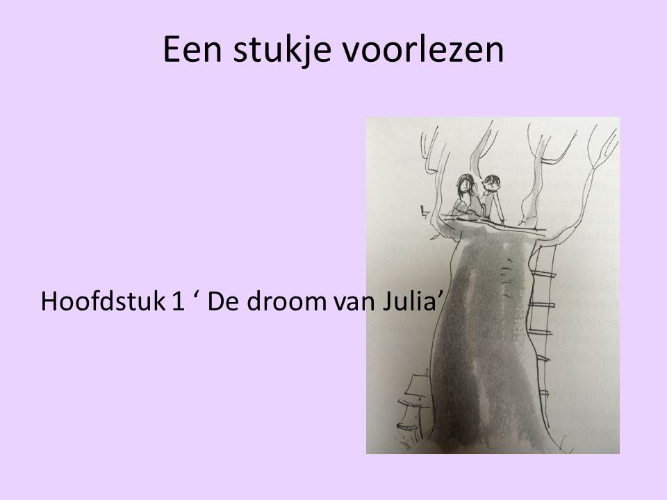 Een stukje voorlezen Hoofdstuk 1 ' De droom van Julia'