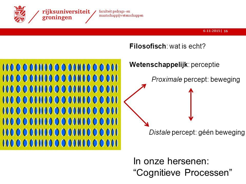 In onze hersenen: Cognitieve Processen