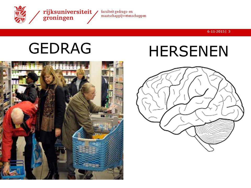 GEDRAG HERSENEN