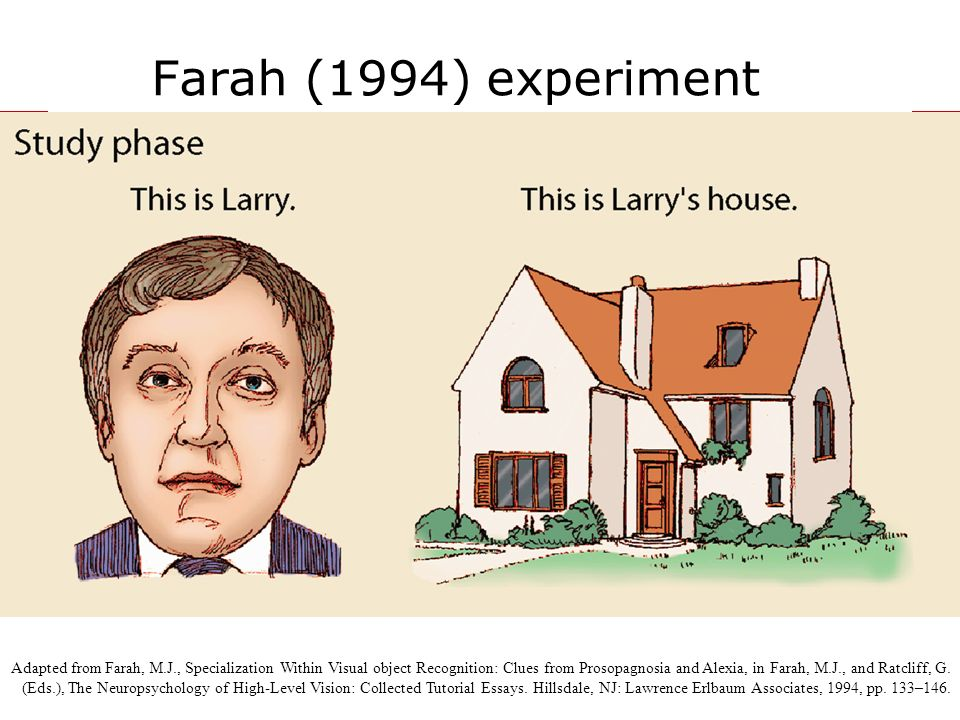 Farah (1994) experiment