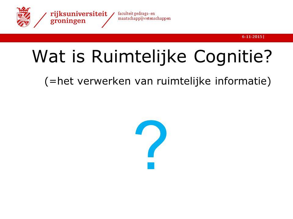 Wat is Ruimtelijke Cognitie