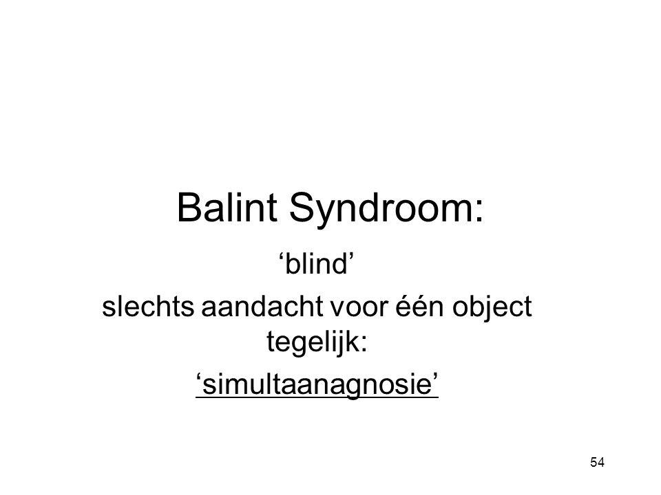 'blind' slechts aandacht voor één object tegelijk: 'simultaanagnosie'