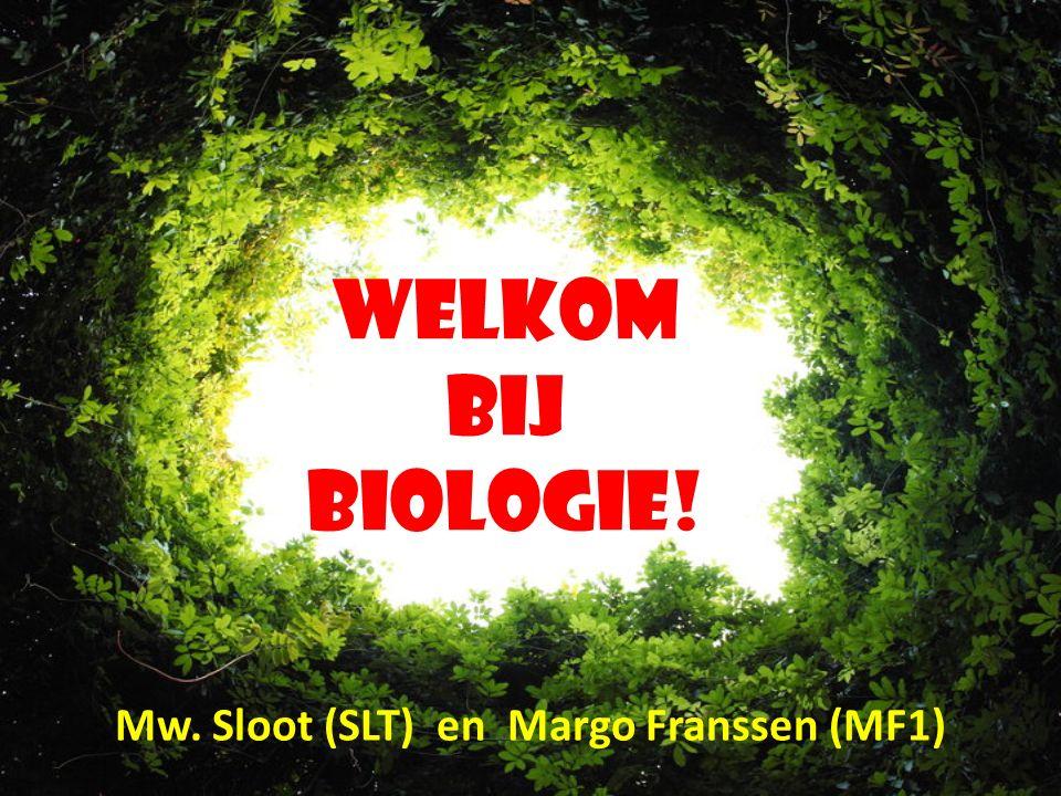 Mw. Sloot (SLT) en Margo Franssen (MF1)