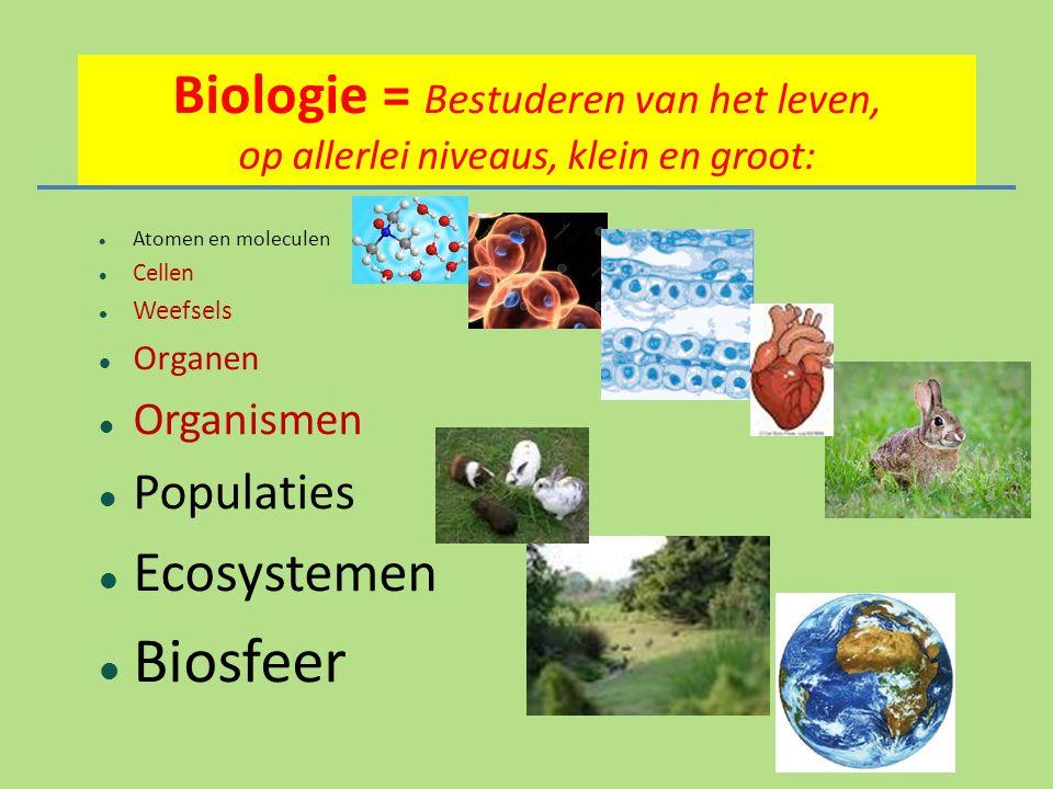 Biologie = Bestuderen van het leven, op allerlei niveaus, klein en groot:
