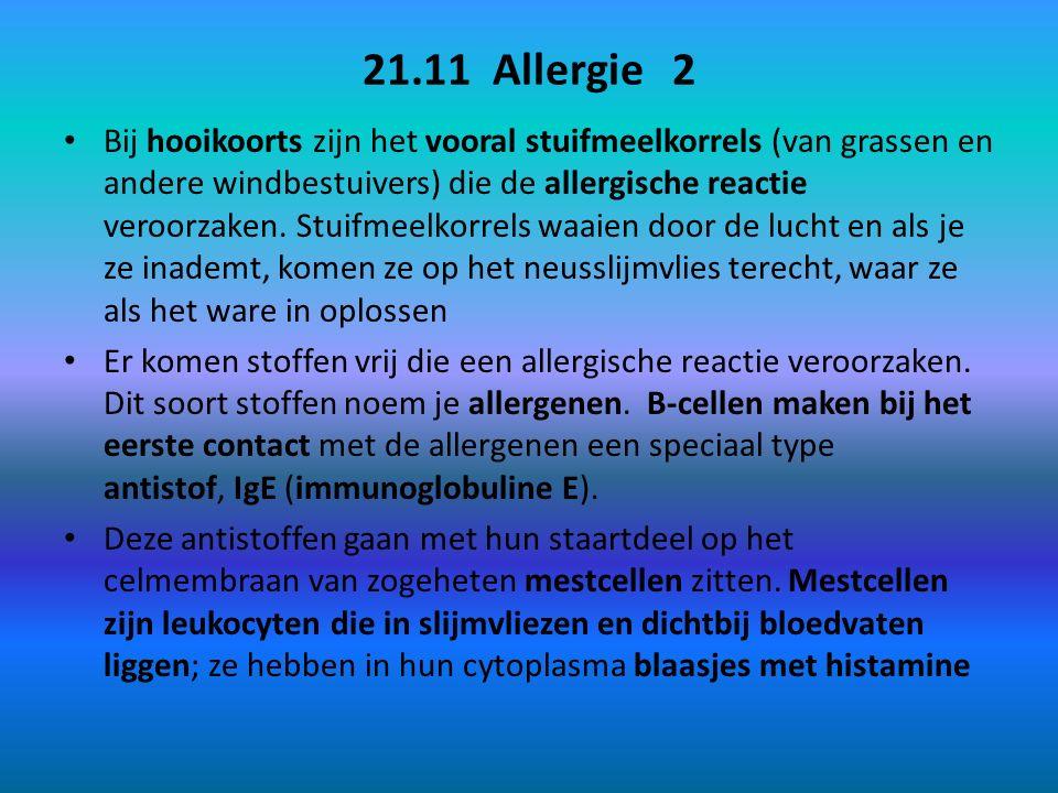 21.11 Allergie 2