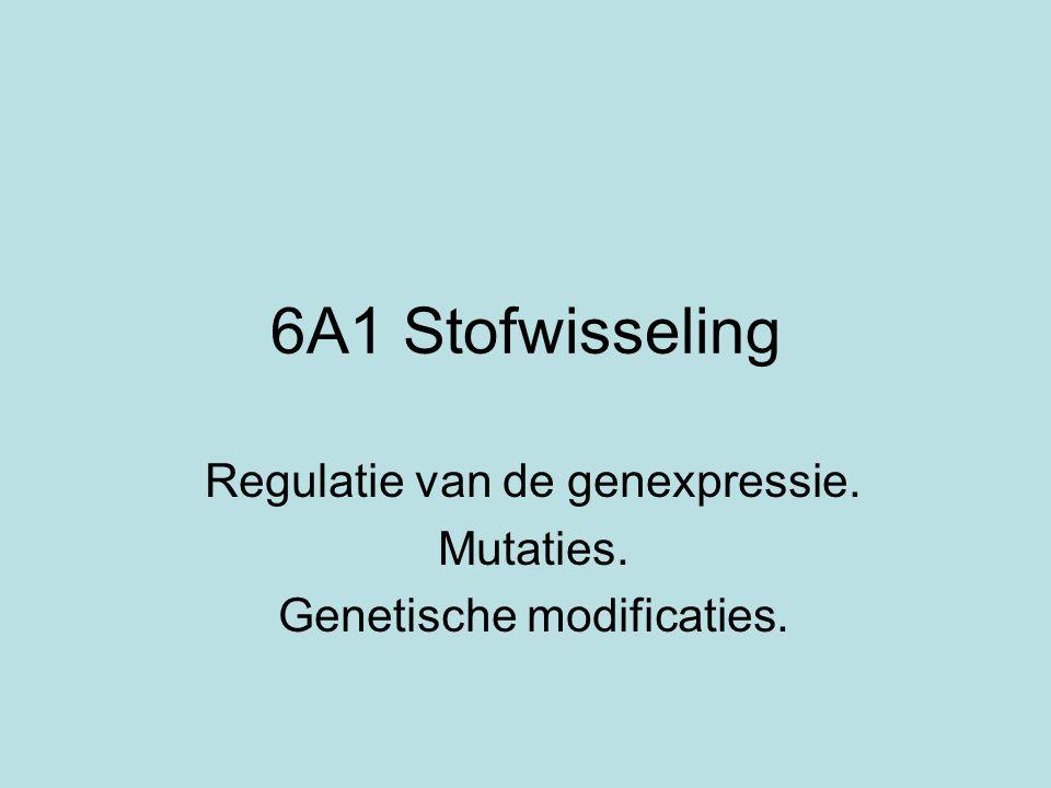 Regulatie van de genexpressie. Mutaties. Genetische modificaties.