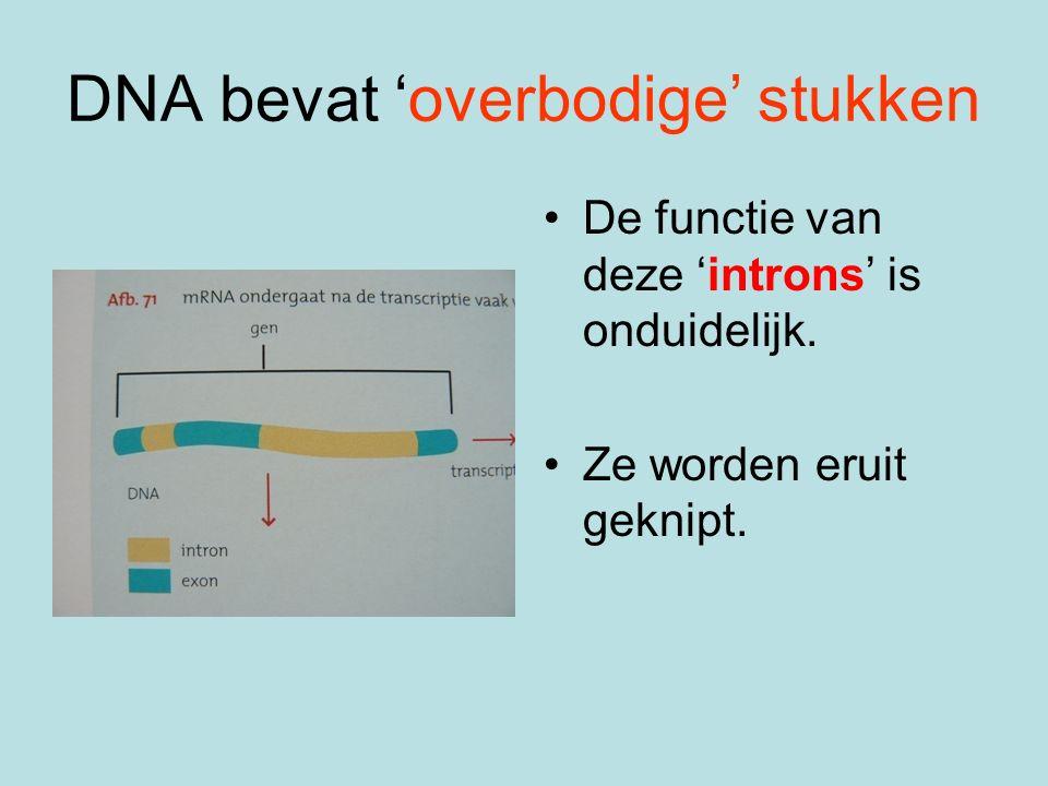 DNA bevat 'overbodige' stukken