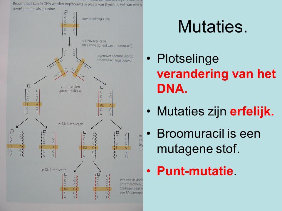 Mutaties. Plotselinge verandering van het DNA. Mutaties zijn erfelijk.