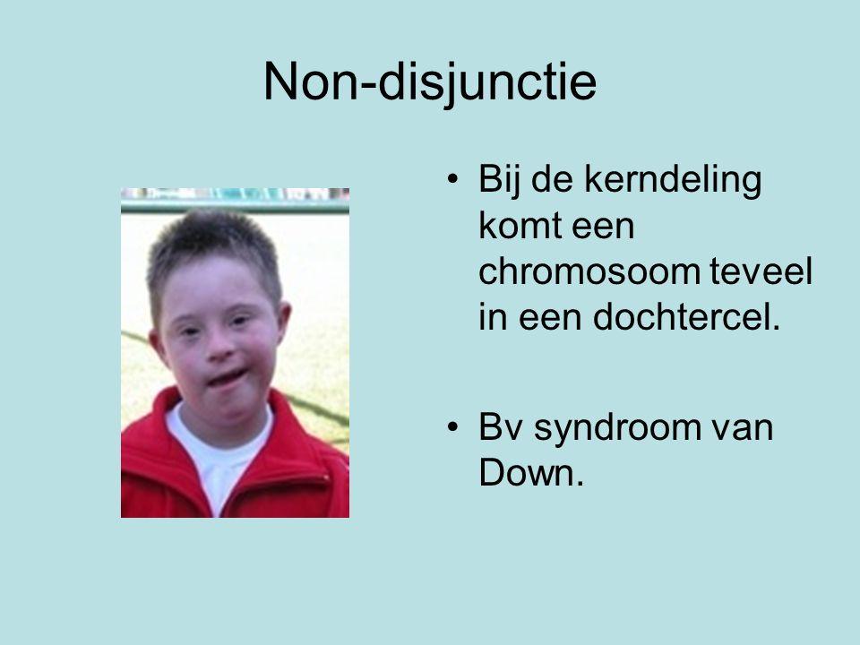 Non-disjunctie Bij de kerndeling komt een chromosoom teveel in een dochtercel.