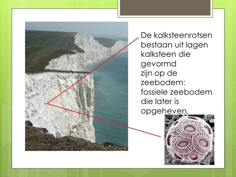 De kalksteenrotsen bestaan uit lagen. kalksteen die gevormd.