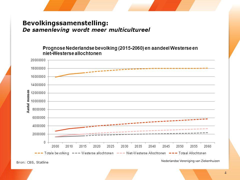 Bevolkingssamenstelling: De samenleving wordt meer multicultureel