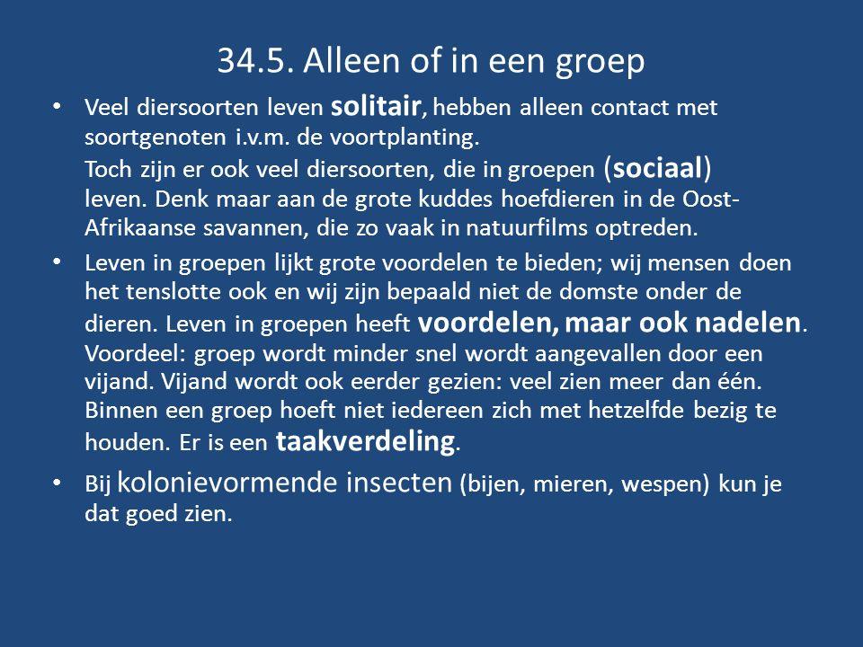 34.5. Alleen of in een groep