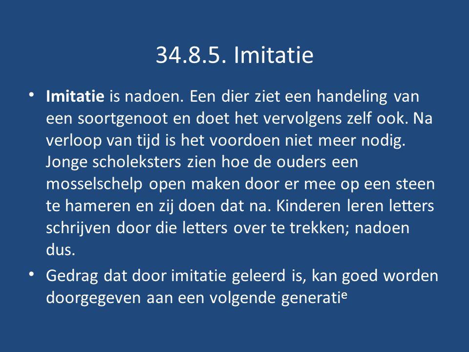 34.8.5. Imitatie