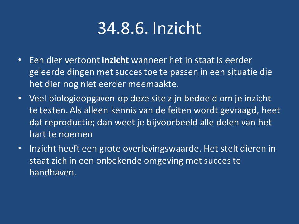 34.8.6. Inzicht